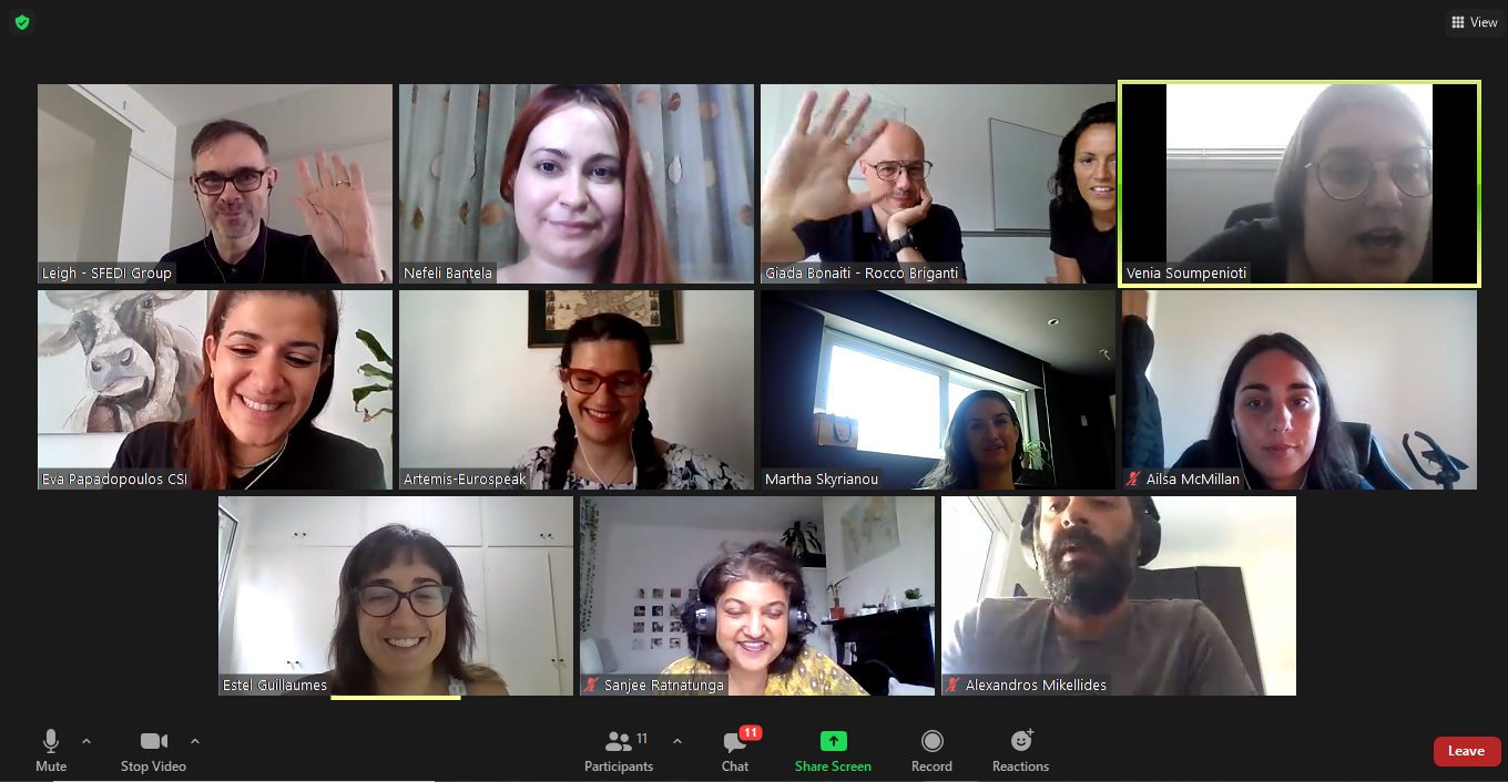 Online Summer Meeting for the SENSES project!